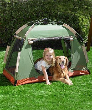 Quick Set-Up Tiny Tent