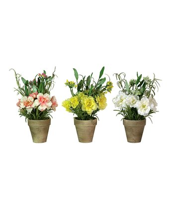 Potted Rose - Set of Three