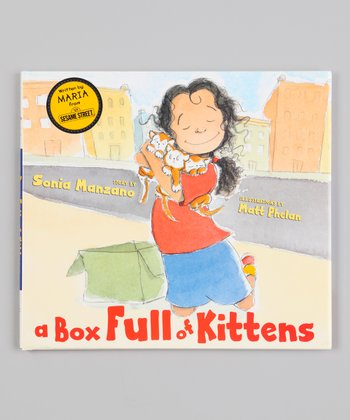 A Box Full of Kittens Hardcover