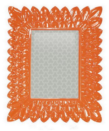 Orange Feather Frame