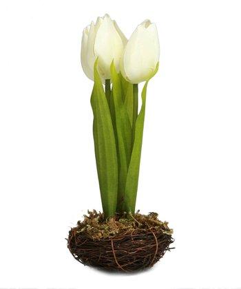 White Tulip Nest