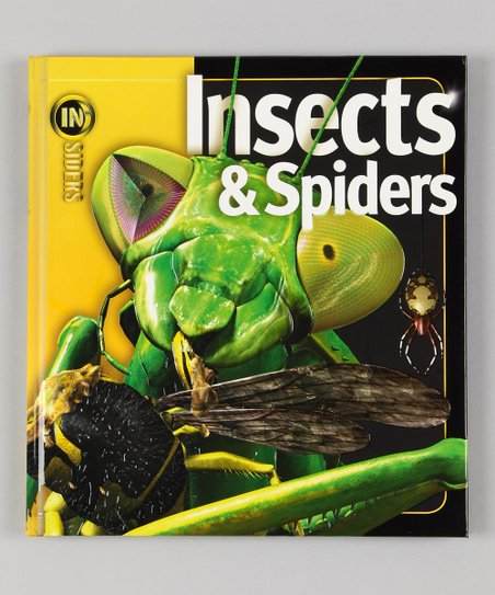 Insects & Spiders Board Book