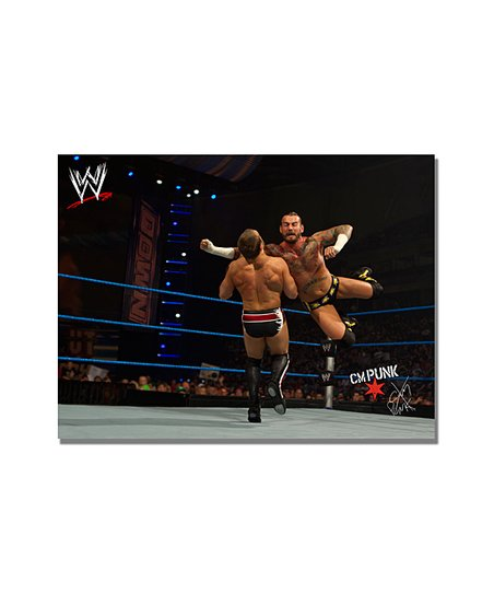 24&#039;&#039; CM Punk Flying Clothesline Gallery-Wrapped Canvas