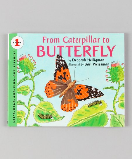 From Caterpillar to Butterfly Hardcover