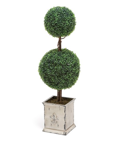 Spheres Boxwood Topiary Arrangement