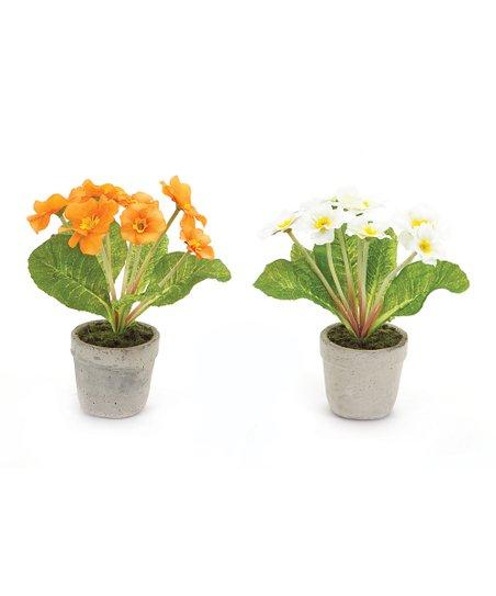 Primula Faux Potted Plant Set