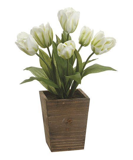 White Potted Tulip Arrangement