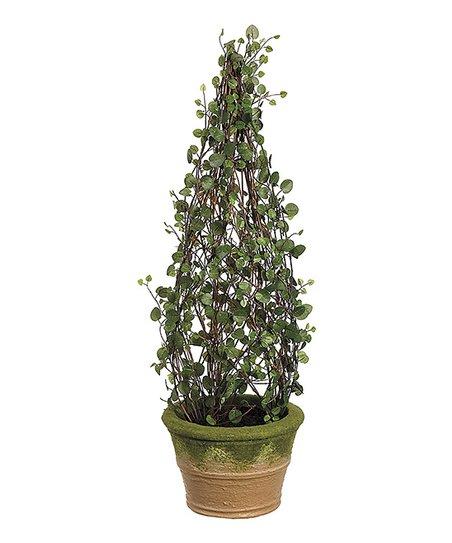 24'' Angel Vine Topiary