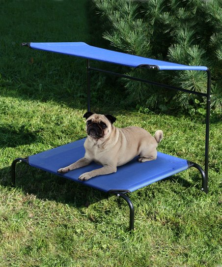 Blue Two-Tier Pet Canopy Cot