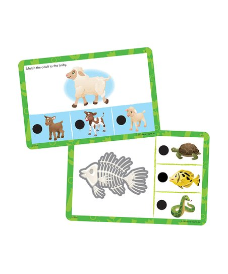 Beginning Science Hot Dots Jr. Card Set